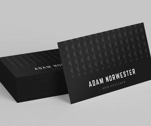 Matt Laminated Business Card